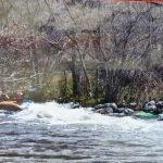 Rafting en Aliseda de Tormes
